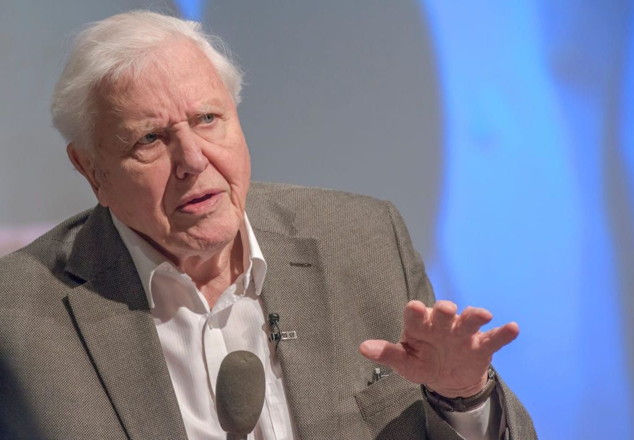 Sir David Attenborough warns that G7 leaders fact some of the most important decisions in human history