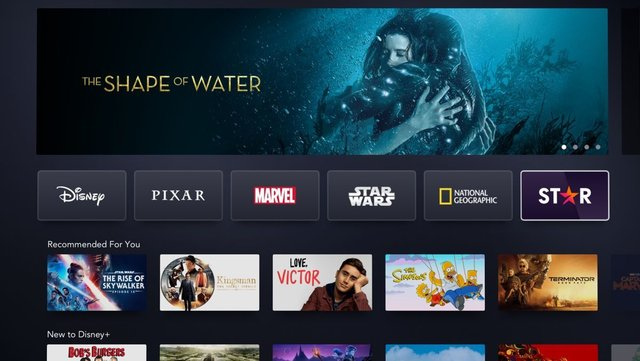 Does the new Star add-on make signing up to Disney + worth it?