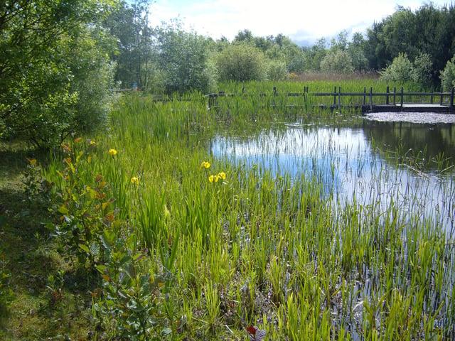 Jupiter Urban Wildlife Centre, Grangemouth