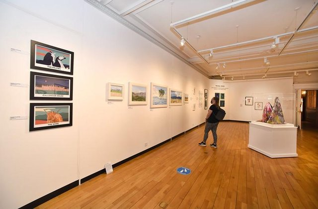 People can once again visit Callendar House's Park Gallery to see the work of local artists