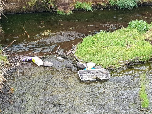 Little Denny Reservoir is become a dumping ground for all sorts of filth - from dog's dirt to Buckfast bottles, nappies and more