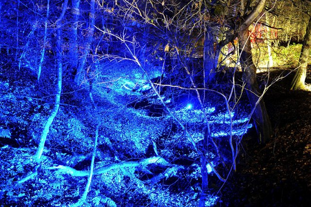 Rough Castle Experiences previously lit up the woodland at Rough Castle, near Tamfourhill, when it held a Legion display on the Romans. Picture: Michael Gillen.