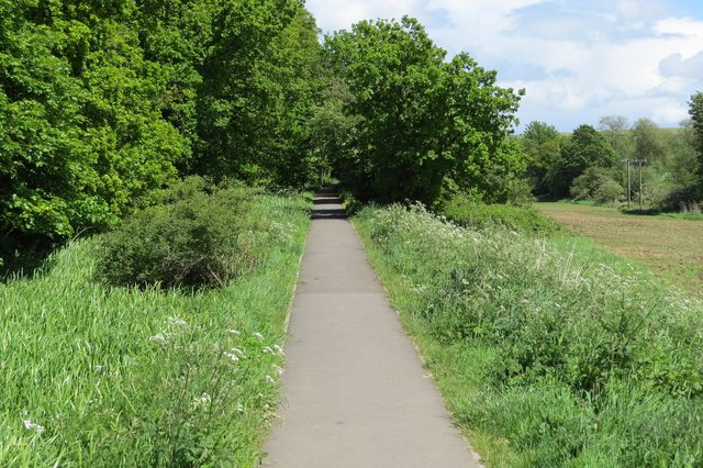 Following the Dorrator Loop, you can walk for eight miles without leaving a green space - quite a feat for a walk that's almost in the centre of Falkirk. It leads to The Helix and returns via brand new paths at the cemetery in Camelon.    Picture: Falkirk Council Ranger Service.