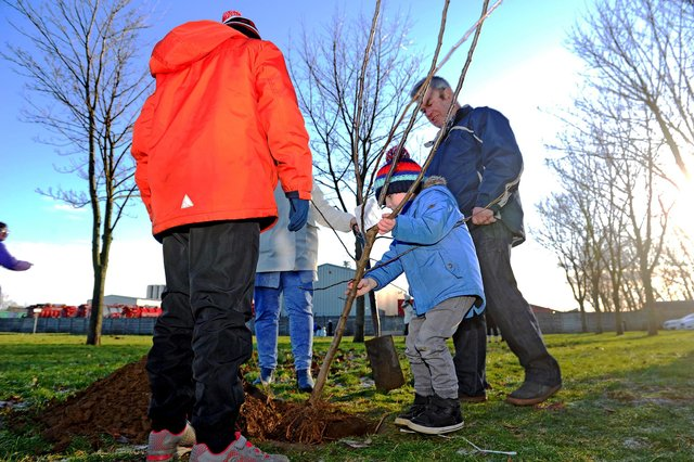 A lot of hard work went into planting the trees in Inchyra Park and now it is hoped the introduction of CCTV will prevent them being vandalised again
