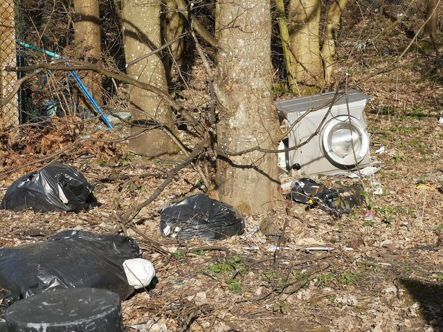The rubbish dumped by selfish motorists is turning the wooded areas off Grangemouth's Wholeflats Road into a real eyesore