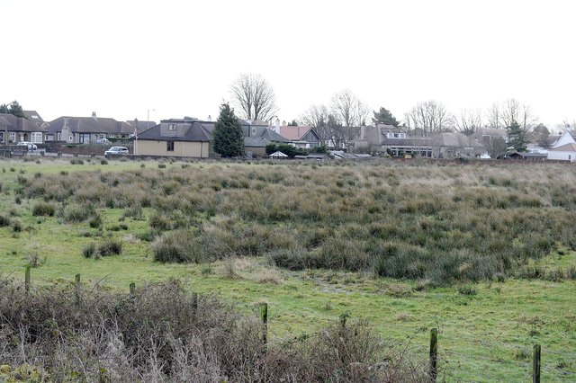 The homes are being built on land off Stirling Road, Larbert next to Forth Valley Royal Hospital